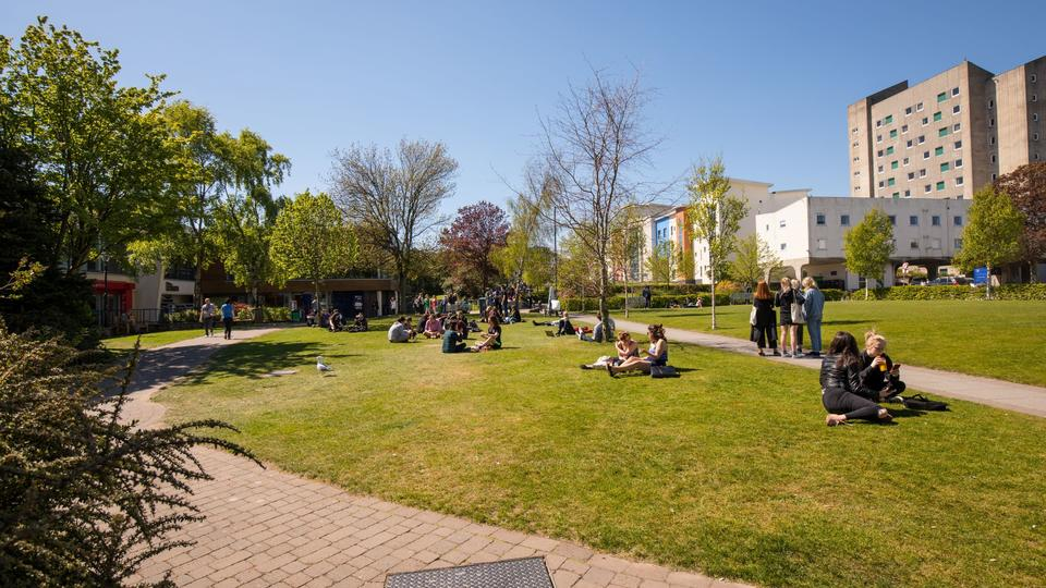 Students sit on Campus Green, looking towards Belmont Flats on a sunny day